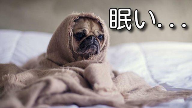 介護夜勤 仮眠